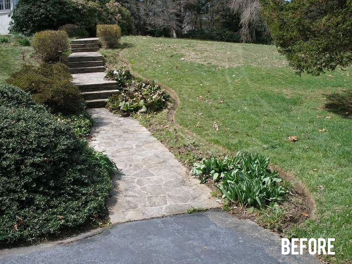 jsm-lawncare-before-mulching