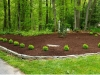 harford county bel air mulching natural hardwood final